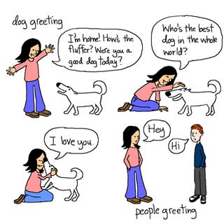 Dog greeting