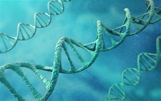 DNA-storage