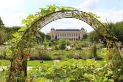 Pascale jardindeplantes