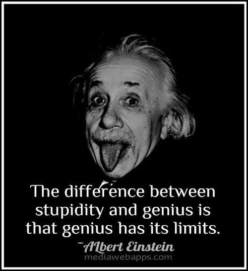 Einstein stupidity