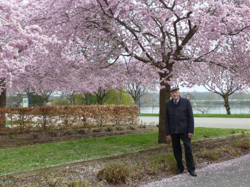 Leclercq-under-cherry-tree