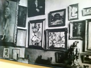 Stein Collection
