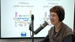 L'Hebreu parle aux Francais
