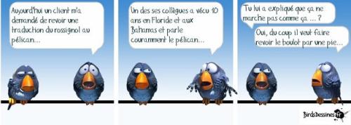 Rene humour 2