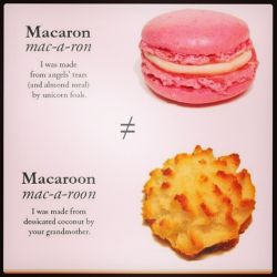 Carmella macaron-v-macaroon