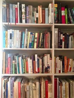 Carmella bookshelf