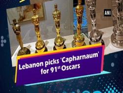 Capharnaum Oscars