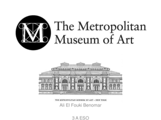 Metroploitan Museum of Art