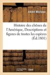 MICHAUX Book cover 3